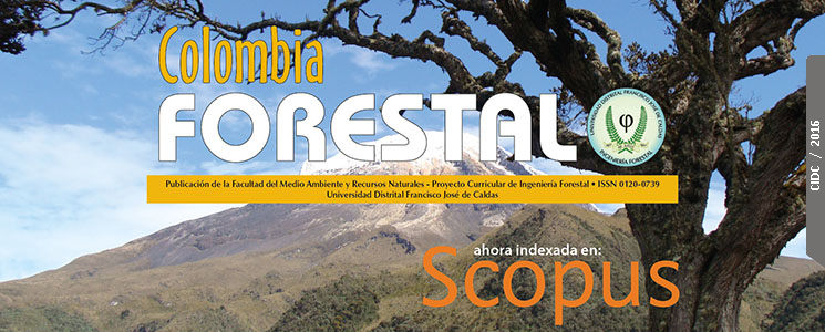 Indexación Internacional de la revista Colombia Forestal