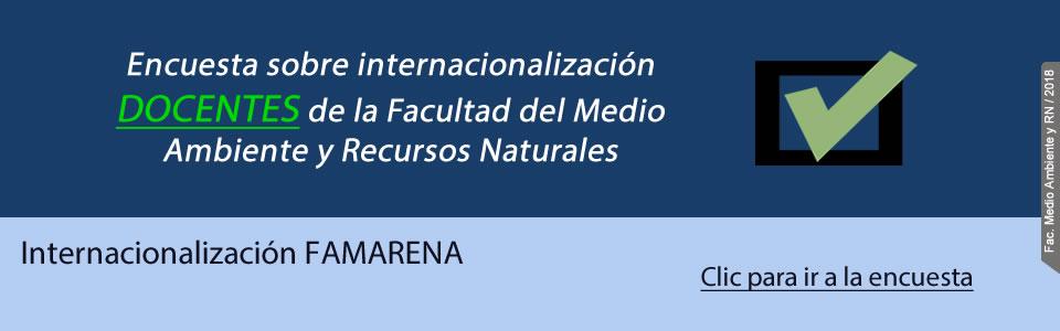 Encuesta sobre internacionalización Docentes