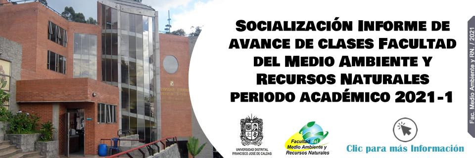 Socialización Informe de avance de clases periodo académico 2021-1